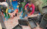 Ngư dân trúng đậm 200 tấn cá cơm ngày giáp Tết