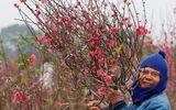 Tưng bừng không khí đón chào năm mới trên khắp nẻo đường châu Á
