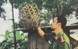 Tin tức - Vụ án đồng rừng và chiếc lồng gà đón sóng điện thoại