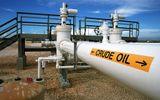 Tin tức - Giá dầu thế giới bị đẩy lên mức cao trong phiên giao dịch ngày 22/2