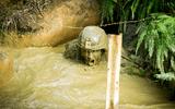 Tin thế giới - Cận cảnh khóa huấn luyện khắc nghiệt nhất của binh lính Mỹ