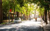 Dự báo thời tiết ngày 2/3: Vùng thấp phía Tây phát triển, Hà Nội nắng nóng 29 độ