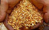Giá vàng hôm nay 3/3/2018: Vàng SJC bật tăng 120 nghìn đồng/lượng