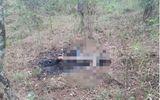 Dừng chân chụp ảnh, nhóm du khách tá hoả phát hiện thi thể nữ giới cháy đen
