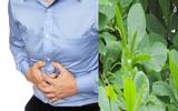 Lá bàng chữa đau dạ dày có thực sự hiệu quả?