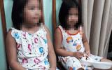 Hành trình phá án vụ bắt cóc 2 cháu bé đòi 50.000USD tiền chuộc
