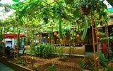 Truyền thông - Thương hiệu - Gia Lai: Nhà hàng Cơm Niêu Mộc – Tinh túy trong ẩm thực Việt