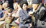 Tin thế giới - Nhật Bản: Người cao tuổi cố tình phạm tội để được vào tù sống lúc cuối đời