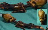 Giải mã bí ẩn của 'bộ xương người ngoài hành tinh' tìm thấy 15 năm trước