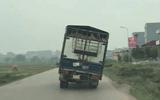 Thót tim cảnh xe tải chở lợn nghiêng 45 độ chạy trên đường