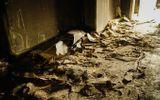 Vụ cháy chung cư Carina, 13 người chết: Tạm ngưng phân công 1 đại úy Cảnh sát PCCC