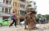 Phê bình Sở Xây dựng vì để Hà Nội thiếu hơn 3.400 trụ nước chữa cháy