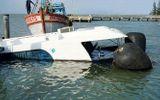 Sau sự cố chìm tàu trên biển Cần Giờ, tạm dừng hoạt động thêm 2 tàu cao tốc