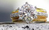 May mắn tìm thấy nhẫn kim cương trị giá 2,5 tỷ đồng trong bãi rác