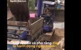 Bé trai 10 tuổi tự lái máy xúc khiến dân mạng