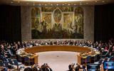 LHQ phản hồi dự thảo nghị quyết của Nga về Syria
