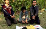 Bắt 3 người Lào vận chuyển 24.000 viên ma tuý vào Việt Nam