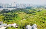 Tin tức - Hơn 30ha đất công bán rẻ cho Quốc Cường Gia Lai: Đại gia Nguyễn Thị Như Loan nói gì?