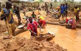 Tin thế giới - Công ty đào vàng của Trung Quốc bị tố hủy hoại vùng đất Cameroon