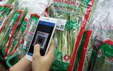 """Sản phẩm - Dịch vụ - Ứng dụng di động """"giải cứu"""" người tiêu dùng khỏi """"ma trận"""" thực phẩm bẩn"""