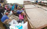 Tin tức - Đồng Nai: Hàng trăm tấn cá chết trắng sông