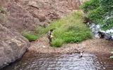 Tin tức - Công an khám nghiệm thi thể nam phượt thủ mất tích trên núi Tà Năng - Phan Dũng