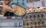 Tin tức - Dân mạng xôn xao clip trứng gà nở ngay trên xe tải vì trời quá nóng