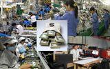 Thị trường - KJVC - Thương hiệu chứa trọn Niềm tin