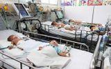Tin tức - Mùa hè nắng nóng, cảnh giác bệnh viêm não Nhật Bản ở trẻ nhỏ