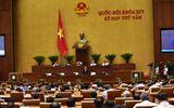 TOÀN CẢNH: Bộ trưởng Bộ TN&MT Trần Hồng Hà trả lời chất vấn