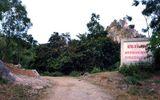 Thanh Hóa: Xử lý người dân chặt phá cây trong rừng đặc dụng Hàm Rồng