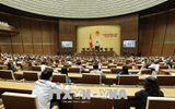 Quốc hội biểu quyết thông qua hai dự án Luật