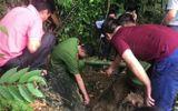 """Sự thật tìm thấy 3 tấn vàng trong hang """"Bò Hống"""" ở Lạng Sơn"""