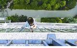 """Tin tức - Video: """"Người nhện"""" 5 tuổi thoát chết thần kỳ sau khi rơi từ tầng 20"""