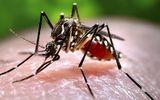 8 căn bệnh dễ mắc vào mùa mưa và cách phòng chống