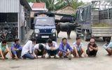Tin tức - Bắt quả tang hàng chục nông dân mang trâu đi đấu ăn tiền