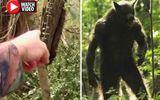 """Tin tức - Video: Kinh hãi phát hiện sinh vật lạ """"nửa người, nửa thú"""" cao 2m trong rừng"""