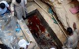 Hơn 16.000 người muốn uống nước trong quan tài chứa hài cốt Ai Cập 2000 năm