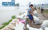Hà Nội: Hơn 6.000 người dân Chương Mỹ sơ tán do ngập lụt