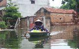 Chùm ảnh: Nước ngập đến cổ, người dân Thủ đô đưa lợn, gà lên nhà ăn ngủ cùng chủ