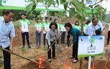 """Phát huy đạo lý """"uống nước nhớ nguồn"""" – Vinamilk trồng 100.000 cây xanh tại Bắc Kạn"""