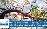 Dự báo thời tiết hôm nay 9/8: Hà Nội ngày nắng nóng, mưa rào về đêm