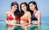 """Tin tức - Top 3 Hoa hậu Việt Nam 2016 diện bikini, khoe """"dáng ngọc"""" bên hồ bơi vô cực dát vàng"""
