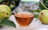 Tin tức - Những lợi ích thần kỳ đối với sức khỏe khi uống nước lá ổi mỗi ngày