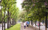 Dự báo thời tiết hôm nay 31/8: Mưa tại Hà Nội giảm nhanh từ trưa, chiều