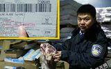 Thu giữ hàng trăm cân thịt, cá hết hạn sử dụng gắn mác nhập ngoại tại Trung Quốc
