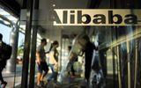 Tin tức - Bắt giữ 21 nghi phạm liên quan vụ đánh cắp thông tin của hơn 10 triệu khách hàng Alibaba