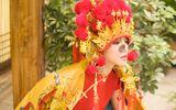 """Tin tức - Thiên Nga The Face đón Trung thu bằng bộ ảnh """"cô dâu châu Á"""" siêu ấn tượng"""
