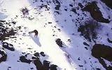Video: Báo săn đuổi cừu non quyết liệt và cái kết đầy bất ngờ