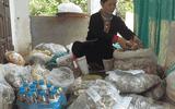 Bệnh nhân đau nhức xương khớp mừng rỡ khi biết đến bài thuốc của lương y Triệu Thị Hòa